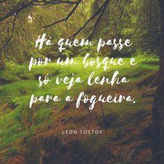Para refletir... Boa semana pra todos!! #menoslenhanafogueira #boraserfeliz #bomdia #lindodia #éavida #eébonita #eébonitaaaa