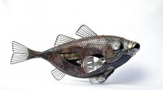 SCRAP METAL FISH — Edouard Martinet form Brittany, France, is an amazing artist who transforms scrap metal into incredible sculptures of insects, birds, fish, and other animals. Martinet creates the sculptures from all manner of salvaged parts & junk, including car and bicycle parts, typewriters, and medical equipment.