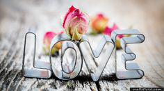 You can view, download and comment on Valentines Day Love free hd wallpapers for your desktop backgrounds, mobile and tablet in different resolutions.