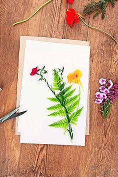 Tee itse kasviprässi - Make your own flower press Text  Auli Honkanen, Photos and Idea Tanja Konstenius www.viherpiha.fi
