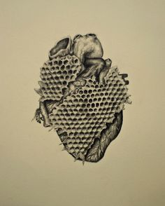 """My heart is a honey comb"". Vintage inspired anatomical drawing with a twist by Andy van Dinh ༺♥༻"