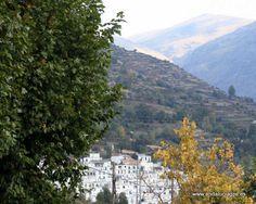 """#Granada #Trevélez - Paisajes GPS 36º 59' 42"""" -3º 16' 12"""" / 36.995000, -3.270000    Desde esta panorámica localidad podremos observar los más bellos paisajes de la sierra Nevada: el Mulhacén, a espaldas del pueblo, con casi 3.500 metros de altitud, es el pico más alto de la Península. Desde el barrio Alto (con un carril que llega hasta Capileira) se contempla una de las vistas más emblemáticas de las Alpujarras en época de nieve."""