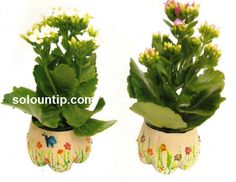 Styling flower pots with plastic bottles. Flower Crafts, Diy Flowers, Flower Pots, Plastic Bottle Art, Recycle Plastic Bottles, 100 Diy Crafts, Craft Club, Recycled Crafts, Planter Pots