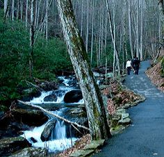 Helen, GA  Hike to Anna Ruby Falls. Double falls. Half mile hike each way....paved and beautiful every step.