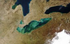 Great Lakes Water Quality Agreement commitment plan open for public comment - MSU Extension Solar System Exploration, Agricultural Practices, Nasa Images, Michigan Travel, Lake Water, Water Quality, Lake Erie, Aquatic Plants, Open Water