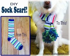 Sew DoggyStyle: DIY Recycled Sock Scarf