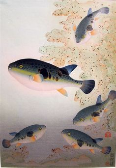 Fish block print ~ artist Ohno Bakufu (1888-1976) went down in a submarine to sketch fish for this famous series of prints & paintings known as The Great Japanese Fish Picture Collection. #art