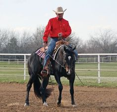 Horse Training: The Sidepass from Horse | EquiSearch