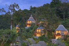 Keemala Kamala, Thailand tree building ecosystem house yellow hut Forest rural area Jungle yurt Village Resort cottage hillside surrounded