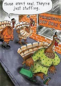 Thanksgiving Humor! Well that explains it!