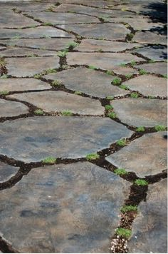 using broken concrete pieces instead of flagstone for patio, concrete masonry, diy, patio, repurposing upcycling, I love how she stained them so perfectly and then planted in between after cutting between the stones