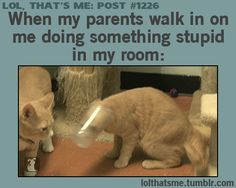 Doesn't even have to be in my room. This is me when they catch me doing stupid stuff anywhere.