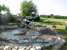 Built to be a pond for dogs. Great planning.