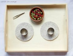 montessori winter trays