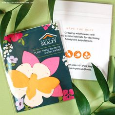 Learn more about these fun Wildflower Seed Paper Shape Packs made to help save the bees and get people gardening. Seed Paper, Green Business, Wildflower Seeds, Save The Bees, Growing Plants, Wild Flowers, Packing, Gardening, Seasons