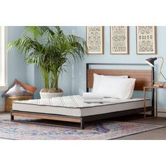 Ayres Twin Loft Bed with Drawers and Shelves Twin Daybed With Trundle, Futon Bunk Bed, Full Bunk Beds, Trundle Beds, Pillow Top Mattress, Foam Mattress, Cheap Mattress, Bunk Beds With Drawers, Grey Bed Frame