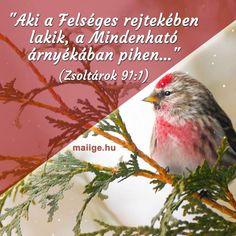 Bible Quotes, Unity, Prayers, Religion, Blessed, God, Interior, Dios, Design Interiors