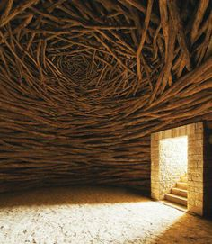 Oak, Andy goldsworthy