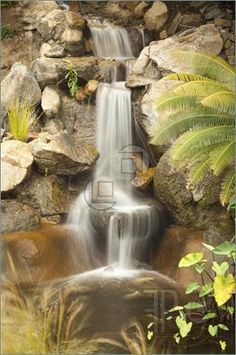 Japanese Zen   Japanese Zen Garden Stream Picture