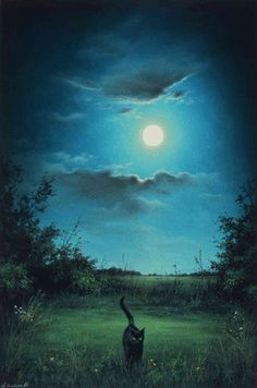 Anne Sudworth - 'Black Cat' - Pastel on board (2009)                                                                                                                                                                                 More