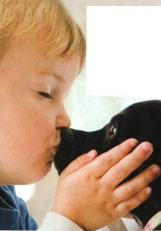 CREDIT: The Dog Training Secret
