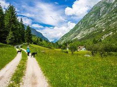 Wunderschöne Landschaft Seen, Country Roads, Mountains, Nature, Travel Europe, Campsite, Travel Report, Destinations, Landscape