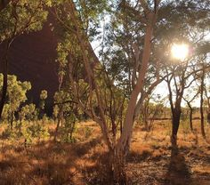 Turn your face to the sun and let the shadows fall behind you... #Uluru #ParksAustralia #Sunrise #Summer