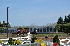 Visit Finger Lakes Casino & Racetrack for horse racing and casino action all year round!