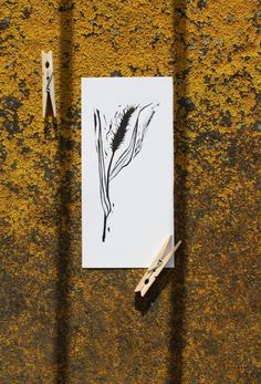 card grass herb herbs leaf leaves lino love nature pagan plant print sample simple stamp wild wildchild naturelove paganlove art besttry klaudiaakcilkis paganbeauty blackandwhite blackwhite creation flower flowers graphics linocut linoprint monochromatic monochrome naturalbeauty naturelover printing printmaking traditional traditionalart traditionalartwork naturelovers printset akcilkis flauteflaute