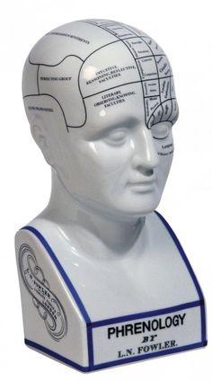 Phrenology Head - The Psychology Shop (Liz)