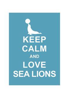 Keep Calm and Love Sea Lions : via Etsy.
