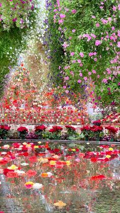 Beautiful Photos Of Nature, Nature Photos, Amazing Nature, Beautiful Landscapes, Beautiful Images, Beautiful Flowers, Flower Landscape, Watercolor Landscape, Landscape Photography