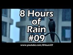 Rain sounds for sleep, relaxation, meditation, studying, yoga. 8 hours of long sleep sounds.  Please like, subscribe and comment if you enjoyed this video. It will really help me out a lot. http://www.youtube.com/subscription_center?add_user=8hoursof