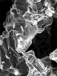 Nanographite Psychedelic Mushrooms (Colloidal graphite dried in Liquid Nitrogen. Image courtesy of Cris Orfescu. Structure Of Matter, Scanning Electron Microscope, Liquid Nitrogen, Natural Structures, Science Art, New Art, Psychedelic, Modern Art, Fine Art Prints