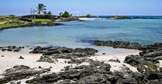 Ai'opio Beach - A Lovely Spot for Swimming, Snorkeling and Picnics on the Big Island