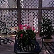Hometalk :: I'm still struggling with my yard so I've been decking out my deck. (h…