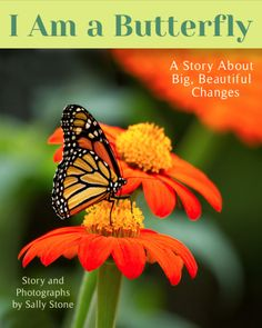 *Links for free butterfly resources and photos inside the book.*   A monarch caterpillar faces metamorphosis, overcomes her fear of the dark chrysalis, and takes flight with beautiful new wings. Big, beautiful changes, no matter how scary at first, can bring new friends and new wings.
