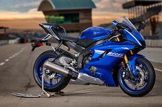2017 Yamaha Supersport Motorcycle - Model Home Motos Yamaha, Yamaha Yzf R6, Yamaha R6 2017, Yzf R125, Yamaha Motorcycles, Ducati, Shizuoka, Kawasaki Ninja, Hummer