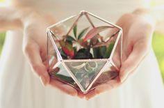 Mini geometric Terrarium for rings