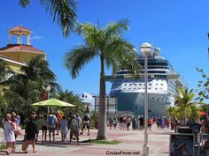 Shore excursions on your cruise can be your largest expense beside your cruise fare.  However, getting off the ship in each port and taking an excursion can really enhance your cruise and give you unforgettable memories. Excursions such as swimming with dolphins, taking a catamaran snorkeling, …