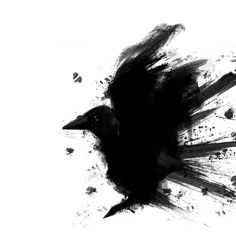 no, this isn't a shrinks inkblot test...  This IS A Raven...& if you truly can't see that, well, huuummm. Tell me  about your childhood... ;)