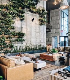 Polished concrete, greenery feature wall, leather couches & timber flooring ~ 1 Hotel at Brooklyn Bridge 🌿 RG ~ 📷