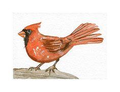 Original Watercolor Art Bird  Cardinal  ACEO Painted by lorisworld, $12.00