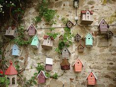Todo dia é dia de jardinar: Condomínio dos passarinhos