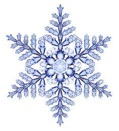 宝石みたい。研究者が数年にわたり記録した雪の結晶たち | ギズモード・ジャパン