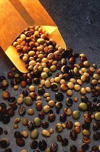 Fonte da imagem: Wikipedia  A soja é uma das principais fontes de isoflavonas…