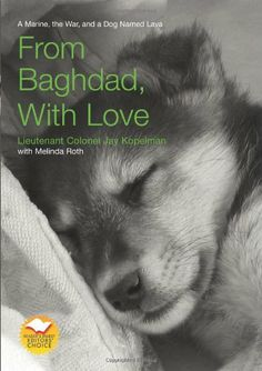 From Baghdad with Love: A Marine, the War, and a Dog Named Lava by Jay Kopelman http://smile.amazon.com/dp/1599211823/ref=cm_sw_r_pi_dp_aAtNtb1P6HYS6RBY