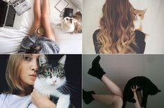 fotos-com-o-seu-gatinho-1