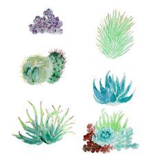 Carly Martin Cacti Pattern
