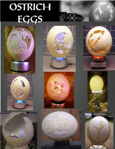 Ostrich Egg Carvings